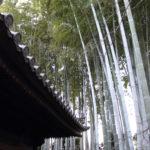 根津美術館で円山応挙の富士図に出会う