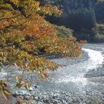 秋の西丹沢、非難小屋で一泊新
