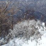 赤城山で雪景色を愉しむ